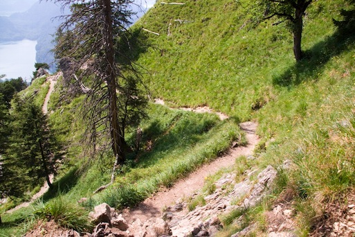 Wanderpfad talwärts vom Tegelberg Richtung Marienbrücke