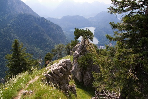 Gratkopf am Tegelberg mit Blick auf das Tal